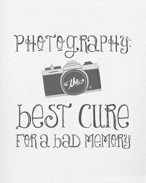 Quotes Photography Extraordinary 40  Photography Quotes And Sayings  Parryz