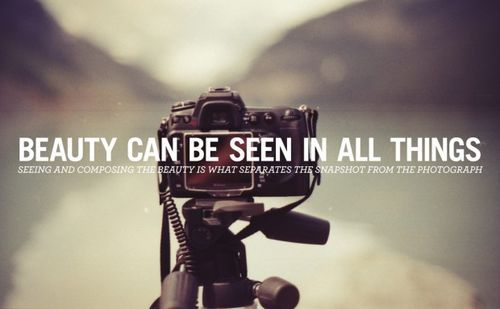 Best Photography Quotes For Photographers  ParryzCom