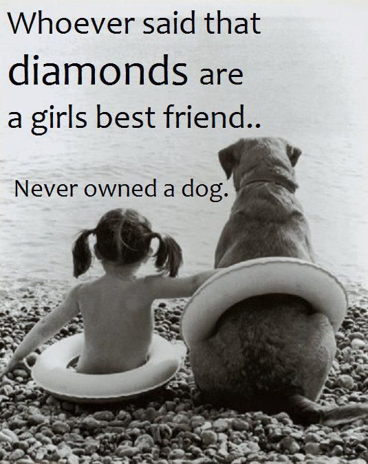 110 Cute Dogs Quotes And Sayings Parryz Com