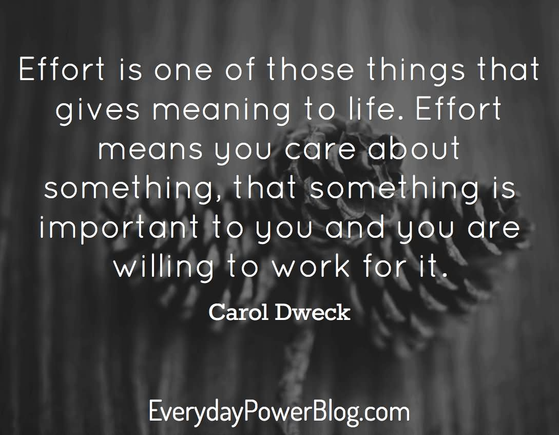 Quotes Effort 30 Best Effort Quotes That Will Completely Change You  Parryz