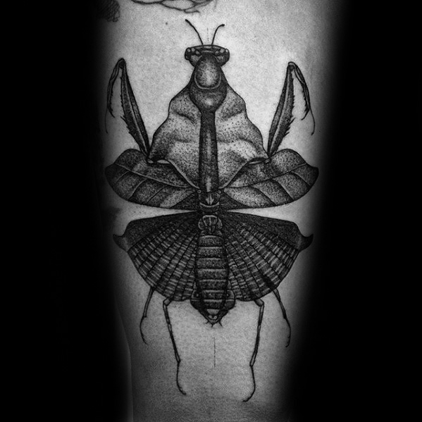 74 Popular Praying Mantis Tattoo Designs And Idea About Insects