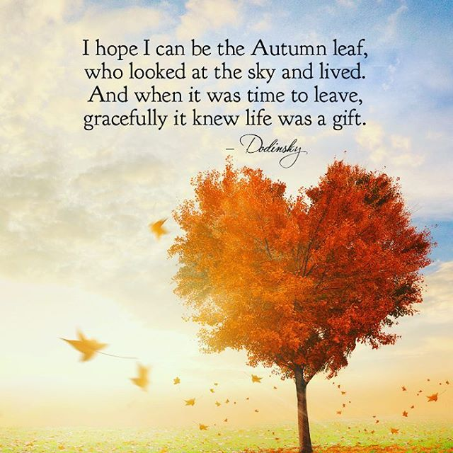 53 Most Amazing Autumn Quotes And Sayings About Autumn