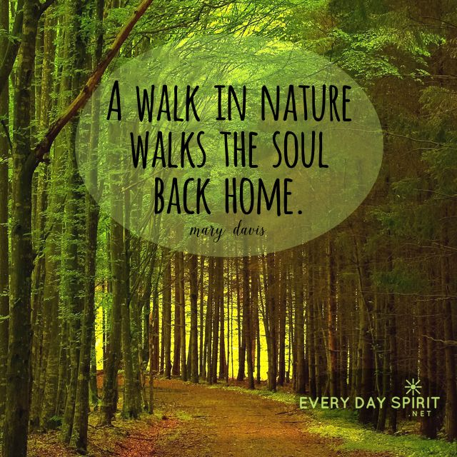 nice nature quotes that will touch your heart com