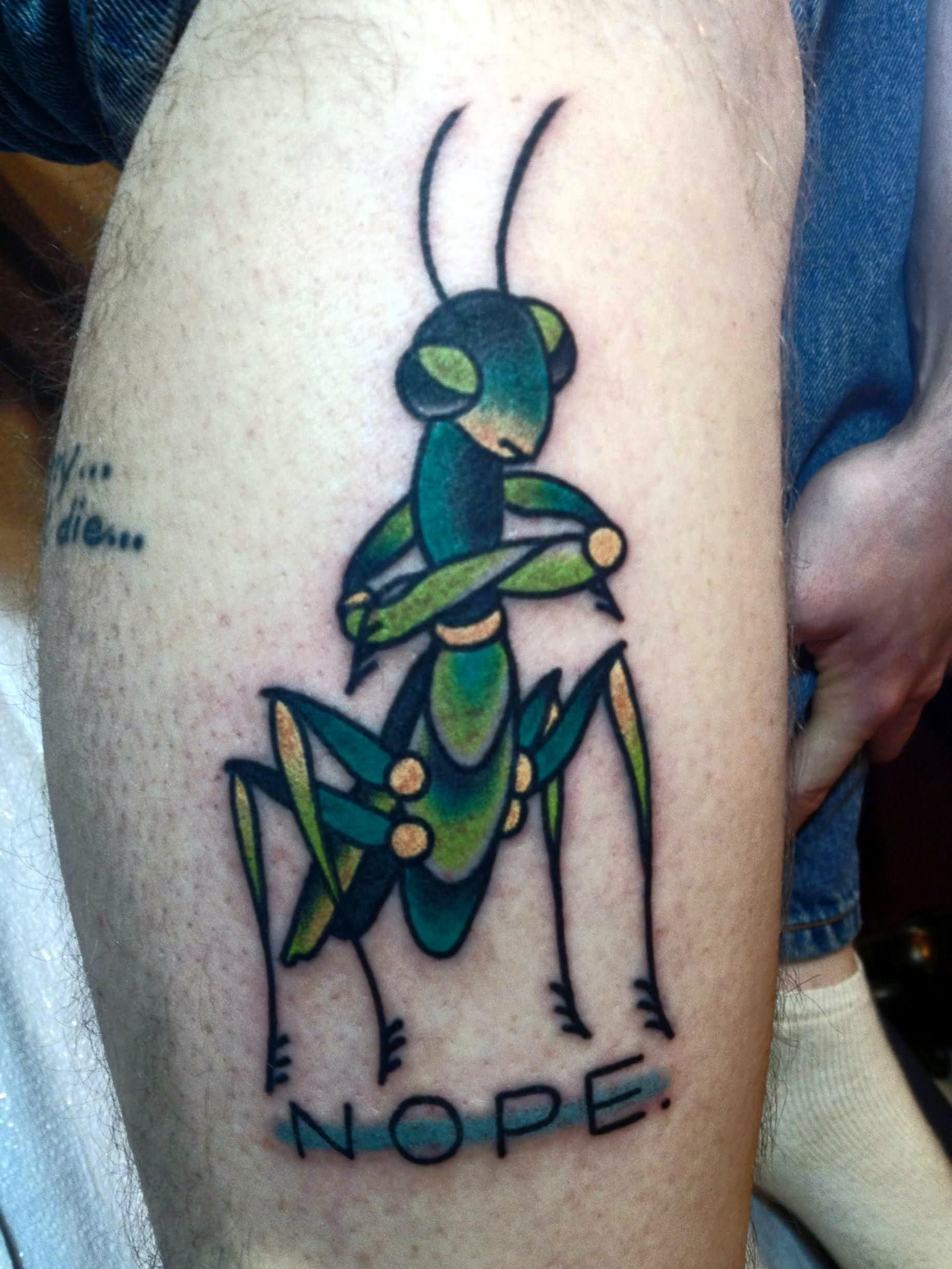 Normal Praying Mantis Tattoos Parryz Com